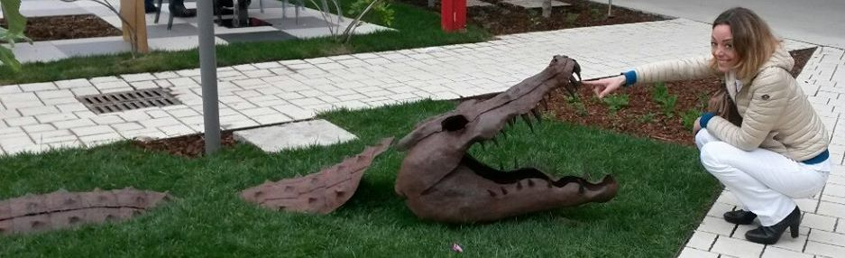 Chi vuol esser lieto, sia: di doman non c'è certezza… (the crocodile and me)